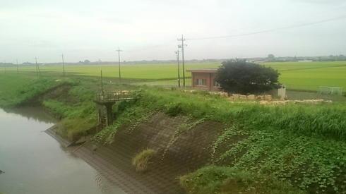 川崎排水機場近くの堤防決壊箇所復旧工事2
